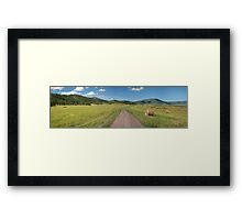 Dirt road in a field with hay rolls Framed Print