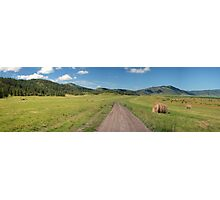 Dirt road in a field with hay rolls Photographic Print