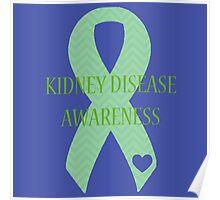 Kidney Disease - Chevron Poster