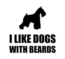 Dog Beard Schnauzer Photographic Print