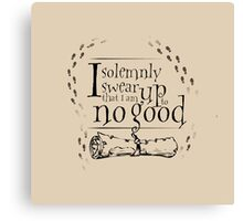 Solemnly Swear Canvas Print