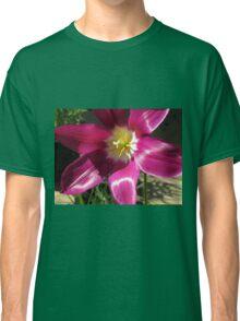 Purple Tulip Macro Classic T-Shirt