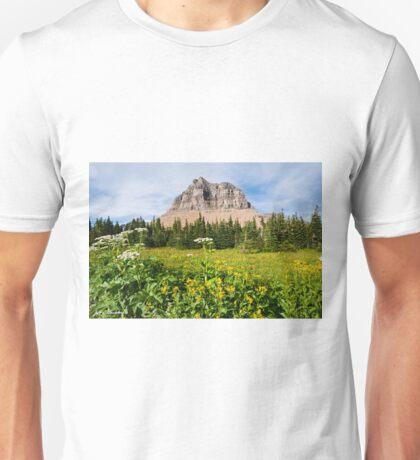 Pollock Mountain from Logan Pass Unisex T-Shirt