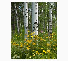 Aspen Trees and Wildflowers Unisex T-Shirt