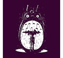 cute raining umbrela totoro Photographic Print