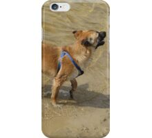 Little Dog and Water iPhone Case/Skin