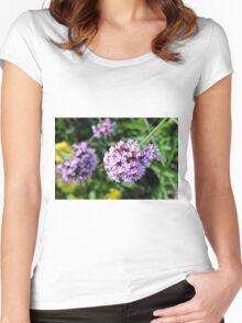 Macro on purple flowers in the garden. Women's Fitted Scoop T-Shirt