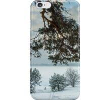 Lagoon in winter iPhone Case/Skin