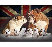 Cute Bulldog Family With Union Jack Photographic Print