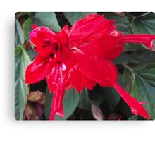 Right Red Flower Canvas Print
