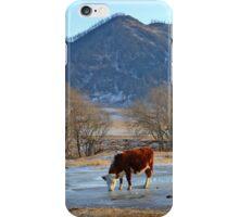 Mountain village winter brook iPhone Case/Skin