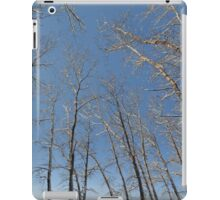 river water trees snow iPad Case/Skin