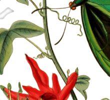 FF - Butterfly-5 Sticker