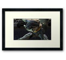 Gatozorro Framed Print
