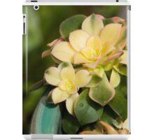 Succulent Marvel iPad Case/Skin