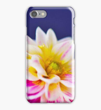 dahlia flower macro iPhone Case/Skin