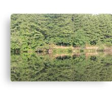 trees reflected in lake Canvas Print