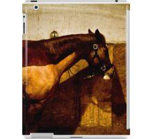 Brown horse iPad Case/Skin