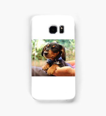 Miniature Dachshund  Samsung Galaxy Case/Skin