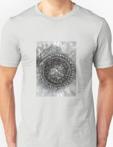 Uroboros and the Cosmic Egg  Unisex T-Shirt