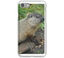 baby groundhog iPhone Case/Skin