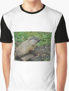 baby groundhog Graphic T-Shirt