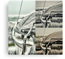 The Catamaran  Canvas Print
