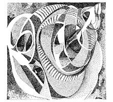 Infinity Shell Photographic Print