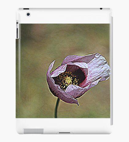 Sebastian iPad Case/Skin