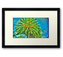 Fish-eyed Palm Framed Print