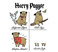 Harry Pugger Photographic Print