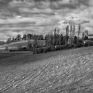 The Church and the Tower of Clackmannan Town by Jeremy Lavender Photography