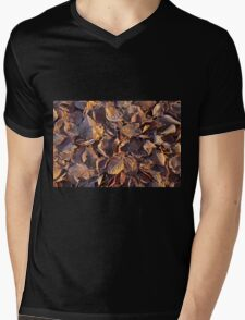 Beech Leaves and Frost Mens V-Neck T-Shirt