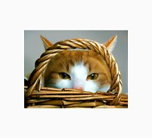Ginger Cat in a basket Unisex T-Shirt