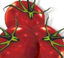 Love Gardening From My Head TOMATOES! Humor Sticker