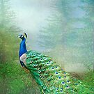 Peacock in the Forest by Bonnie T.  Barry