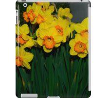 Mary Bohannon Daffodils iPad Case/Skin