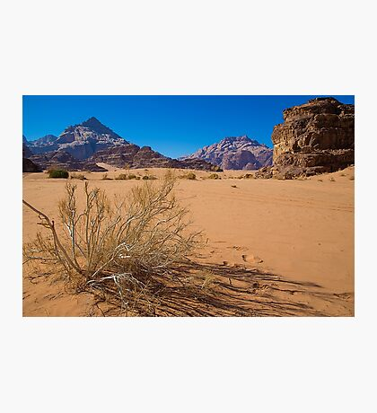 Jordan. Wadi Rum. Sand, Mountains and Vegetation. Photographic Print