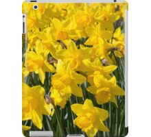 Daft about Daffs iPad Case/Skin