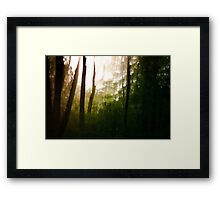 Vanity series [2] Framed Print