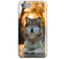 Beautiful Wolf iPhone Case/Skin