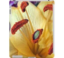 Orange Brushes  iPad Case/Skin