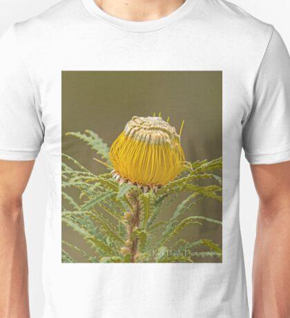 Dryandra stuposa  T-Shirt