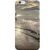 Seeking Solitude iPhone Case/Skin