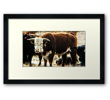 Mess With The Bull, You Get The Horns Framed Print