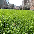 Spring Lawn, High Line, New York City's Elevated Park and Garden  by lenspiro