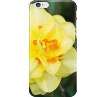 Yellow Flower Sunburst Against Green  iPhone Case/Skin