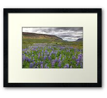 Young Landscapes - Limited Edition Print 1/10 Framed Print