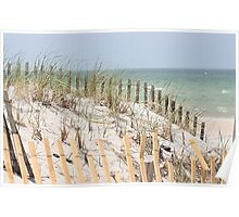 Ocean beach, sand dune, and protective fence Poster
