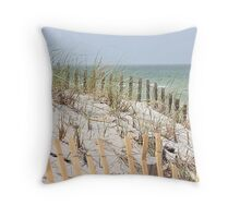 Ocean beach, sand dune, and protective fence Throw Pillow